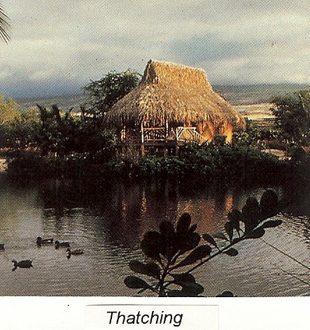 thatch building